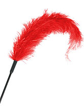 Erotic Ostrich Feather - Red